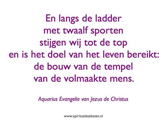 Citaat ladder met twaalf sporten spirituele teksten