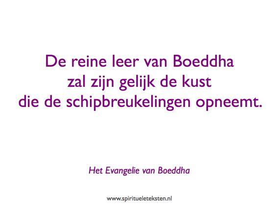 De reine leer van Boeddha als kust citaat spirituele teksten 570