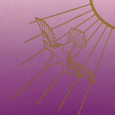 zeven stralen van de geest zevengeest of Heilige geest met duif